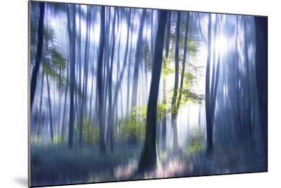 Solitude Bleue-Viviane Fedieu Daniel-Mounted Photographic Print