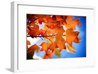 Celebrate Autumn-Philippe Sainte-Laudy-Framed Photographic Print