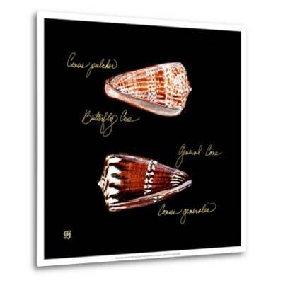 Striking Shells III-Ginny Joyner-Metal Print