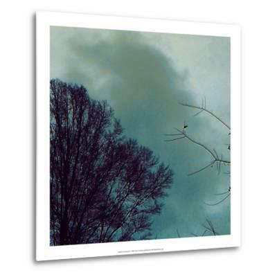Nocturne II-Alicia Ludwig-Metal Print