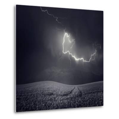 Zootz-Luis Beltran-Metal Print