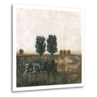 Global Landscape I--Metal Print