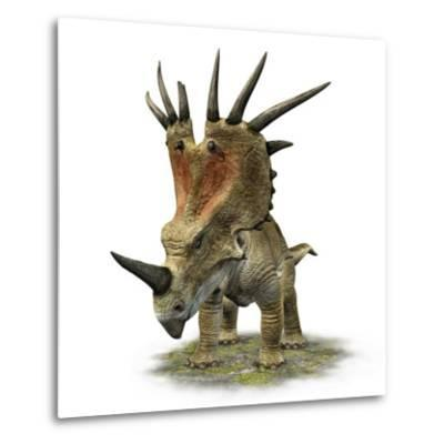 Styracosaurus with a Massive Horned Frill--Metal Print