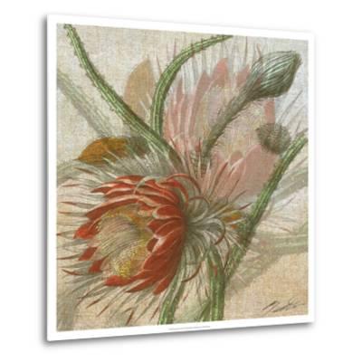 Desert Botanicals II-John Butler-Metal Print