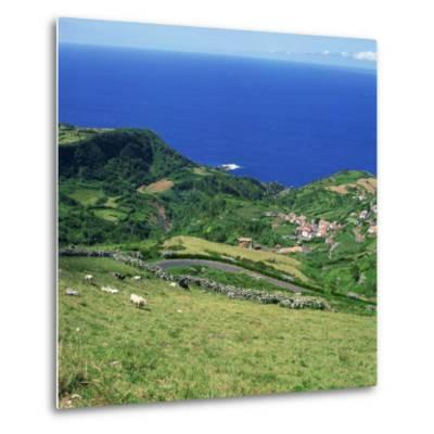 Cattle, Fields and Small Village on the Island of Flores in the Azores, Portugal, Atlantic, Europe-David Lomax-Metal Print