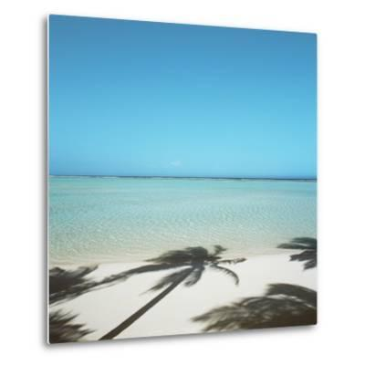 Shadows of Palm Trees on Beach--Metal Print