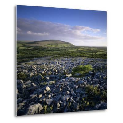 Limestone Pavement, the Burren, County Clare, Munster, Republic of Ireland, Europe-Stuart Black-Metal Print