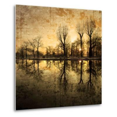 Down Deep into the Pain-Philippe Sainte-Laudy-Metal Print