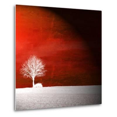 Sensation in Red-Philippe Sainte-Laudy-Metal Print