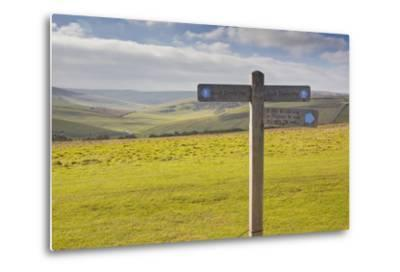 The Rolling Hills of the South Downs National Park Near to Brighton, Sussex, England, UK-Julian Elliott-Metal Print