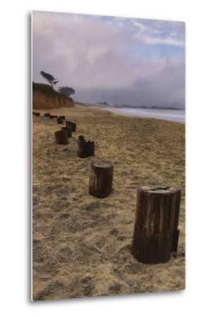 Beach Posts at Half Moon Bay-Vincent James-Metal Print