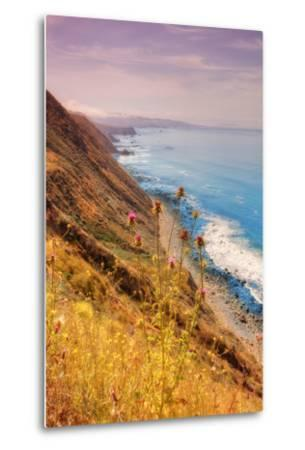 Sonoma Coast Mist-Vincent James-Metal Print