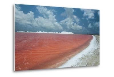 Saline a Salt Mine in Bonaire, ABC Islands, Netherlands Antilles, Caribbean, Central America-Michael Runkel-Metal Print