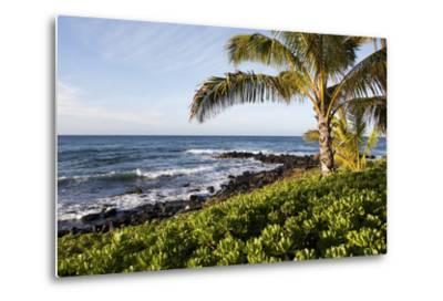 Palm Trees, Volcanic Rock, and Surf on the Beaches at Poipu-Marc Moritsch-Metal Print