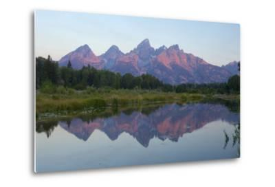 A Reflection of the Grand Teton Range in the Snake River-Barrett Hedges-Metal Print