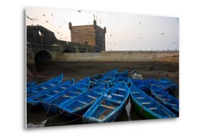 Birds Fly Over the Traditional Blue Boats of Essaouira Harbor-Cristina Mittermeier-Metal Print