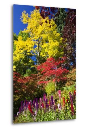 Autumn Color, Butchard Gardens, Victoria, British Columbia, Canada-Terry Eggers-Metal Print