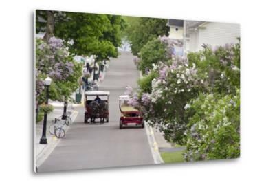 Lilac Lined Street with Horse Carriage, Mackinac Island, Michigan, USA-Cindy Miller Hopkins-Metal Print