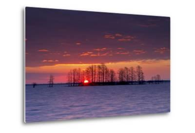 A Colorful Sunrise Over Silhouetted Cypress Trees in Lake Mattamuskeet-Robbie George-Metal Print
