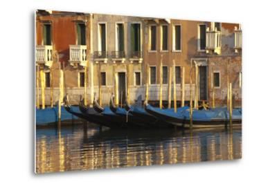 Gondolas Along the Grand Canal in Venice, Italy-David Noyes-Metal Print