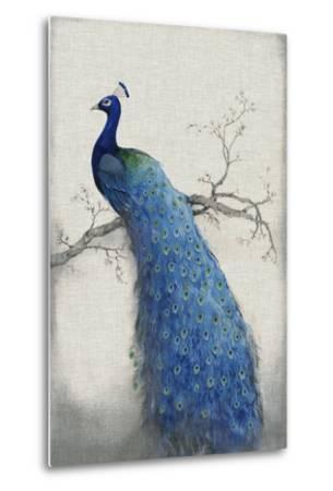 Peacock Blue II-Tim O'toole-Metal Print
