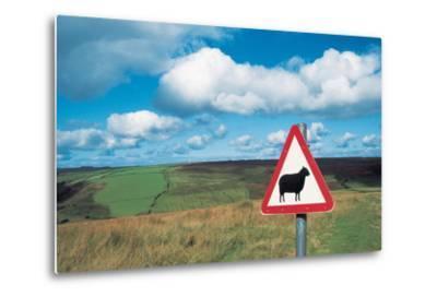 Animal Sign Board--Metal Print