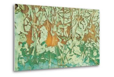 Paint and Fibres on Wood--Metal Print
