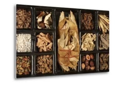 Chinese Medicinal Herbs--Metal Print