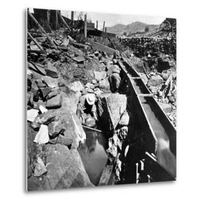 Placer Mining, Panning Out, from 'Gems of California Scenery' Published by Lawrence and…--Metal Print