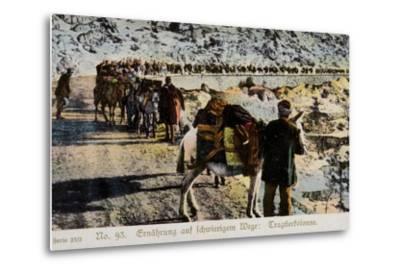 Mule Train on a Mountain Road--Metal Print