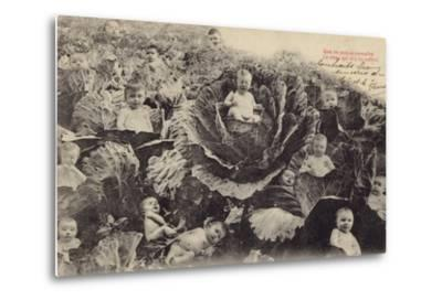 Babies in the Cabbage Patch--Metal Print