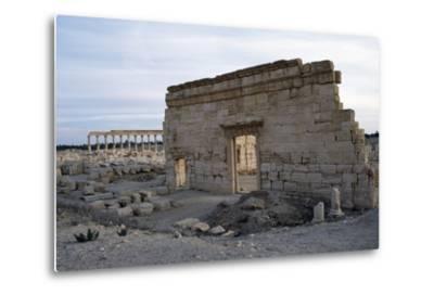 Agora, Palmyra--Metal Print