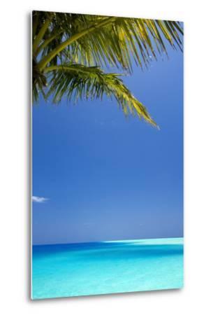 Shades of Blue and Palm Tree, Tropical Beach, Maldives, Indian Ocean, Asia-Sakis-Metal Print