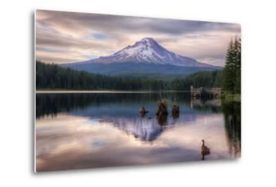 Quiet Time at Trillium Lake, Mount Hood Wilderness, Oregon-Vincent James-Metal Print
