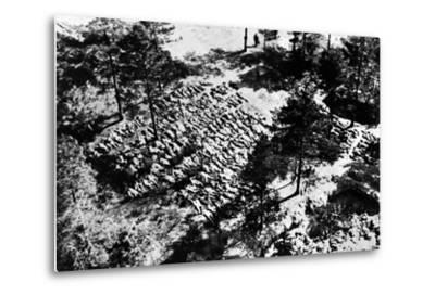 Aerial Photograph of Excavated Bodies from the Mass Graves in Katyn Forest, 1943--Metal Print