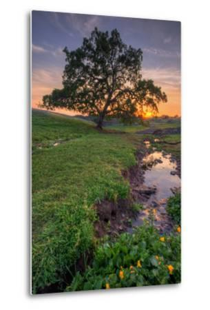 Sunset Steam at Table Mountain, Oroville California-Vincent James-Metal Print