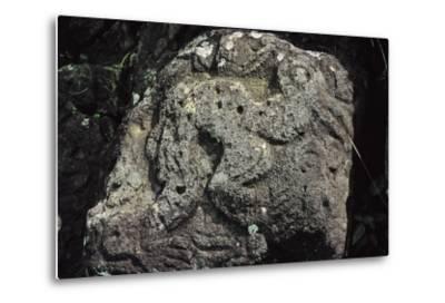Bird Man, Rock Carving Near Orongo, Rapa Nui National Park--Metal Print