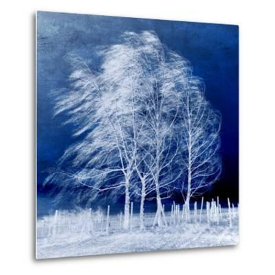 Blue Wind-Philippe Sainte-Laudy-Metal Print