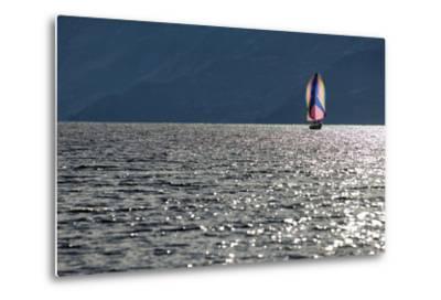 Spinnaker Sailing in British Columbia-Dave Heath-Metal Print