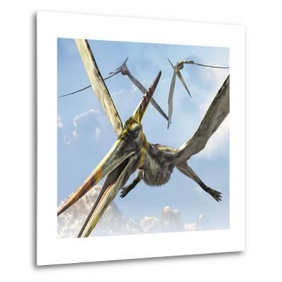 Flying Pterodactyls Searching for Food-Stocktrek Images-Metal Print