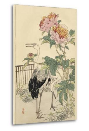 Crane and Peony-Bairei-Metal Print