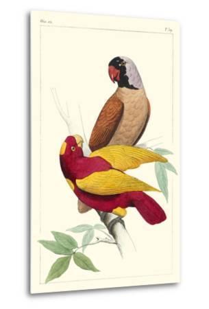 Lemaire Parrots II-C.L. Lemaire-Metal Print