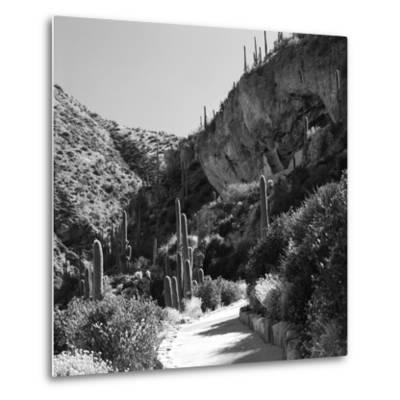 Cliff Dwellings of Tonto National Monument, Arizona,USA-Anna Miller-Metal Print