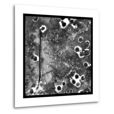 Black Ice II-Renee W^ Stramel-Metal Print