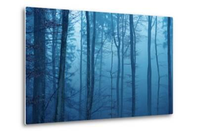 Wrapped in Blue-Philippe Sainte-Laudy-Metal Print