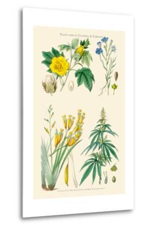Plants Used in Clothing and Cordage. Cotton, Flax, New Zealand Flax, Cannabis-William Rhind-Metal Print