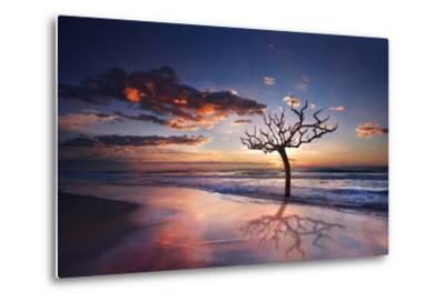 Tree in the Sea-Marco Carmassi-Metal Print