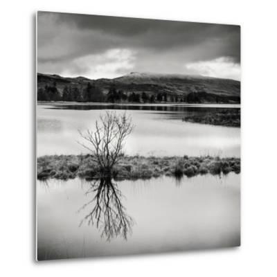 Rural Landscape with Lake-Craig Roberts-Metal Print