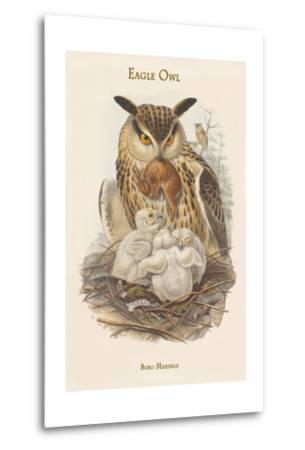 Bubo Maximus - Eagle Owl-John Gould-Metal Print