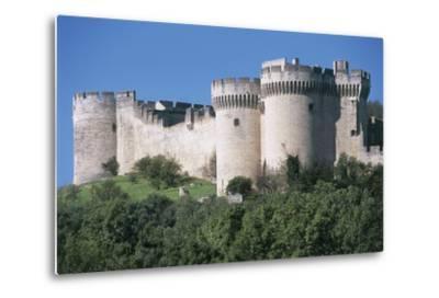 Trees in Front of a Castle, Fort Saint Andre, Languedoc-Roussillon, Villeneuve-Les-Avignon, France--Metal Print